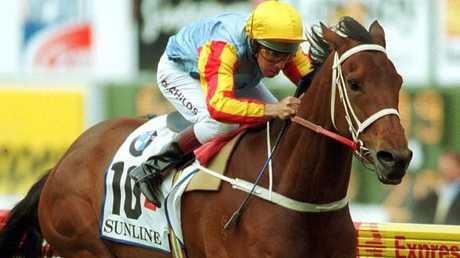 Sunline won 13 Group 1 races.