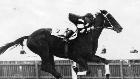 Australia's greatest ever racehorse Phar Lap.