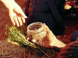 Enormous demand for Australian plants for medicinal use