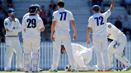 Concerned NSW players attend to Will Pucovski after he was hit by a Sean Abbott short ball. Pic: AAP Image/Tracey Nearmy