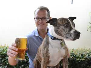 BARKS AND BREWS: Take your dog to pub for Sunday sesh
