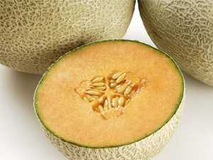 Listeria death traced to rockmelons