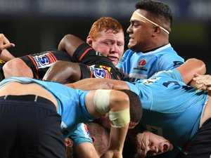 Can Tahs' Scrum Doctor outsmart Scrum Guru?