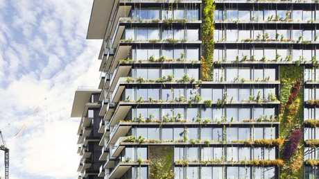 A leading architecture groups wants Gold Coast high-rises to incorporate more green walls like this one on a residential tower near Central Park, Sydney.