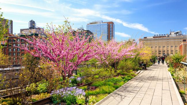 Spring at the High Line in New York City. Picture: istock