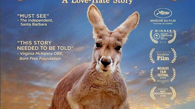 Poster for the documentary Kangaroo : A Love - Hate Story.