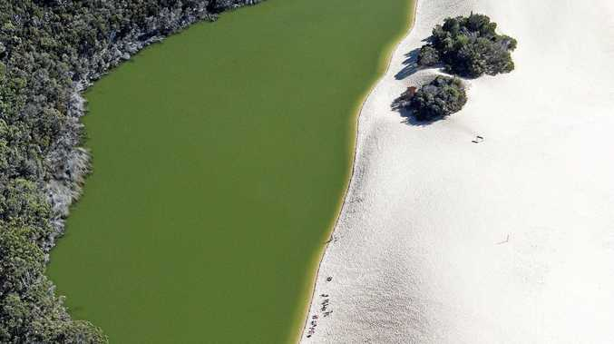 Of the 40 perched dune lakes on Fraser Island, Lake Wabby is the deepest at 11.4m.