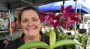 Maryborough markets - Wendy Swan from Burbank Orchid Nursery.