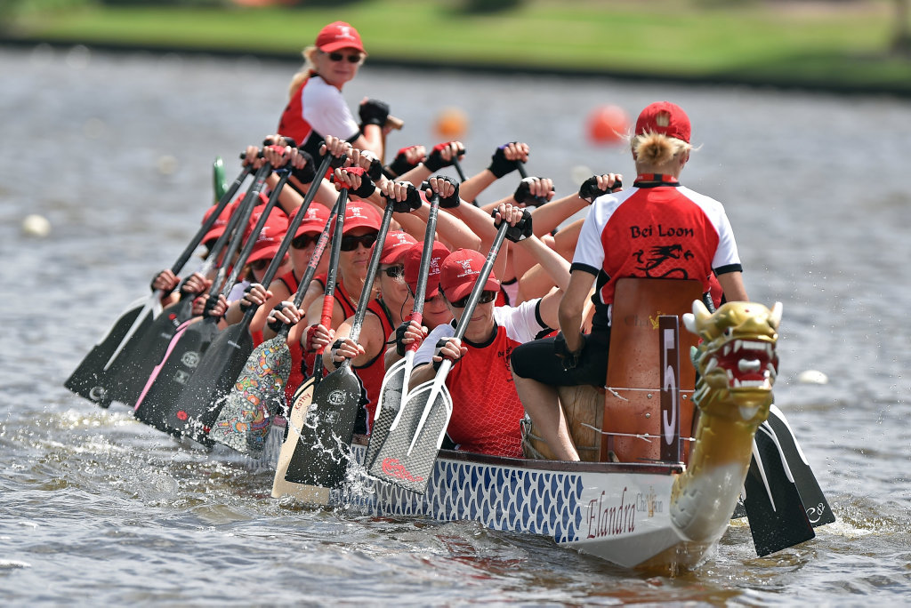 Image for sale: Sunshine Coast Dragon Boat races at Lake Kawana.