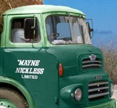 The suspect's Mayne Nickless Truck had a two tone green colour scheme.