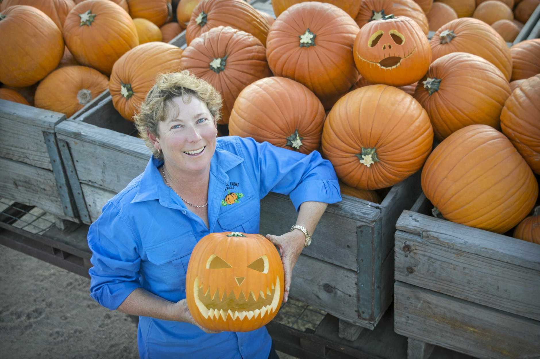 Belinda Williams, Bowen, QLD pumpkin grower and Coles supplier for Halloween.