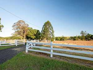 Good clean pastures