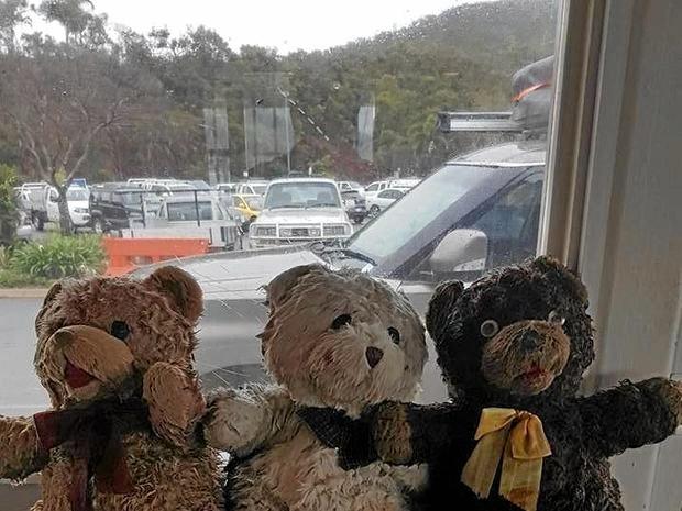 Harbour Master Brad Teys found three stuffed bears in Shute Harbour across three days.