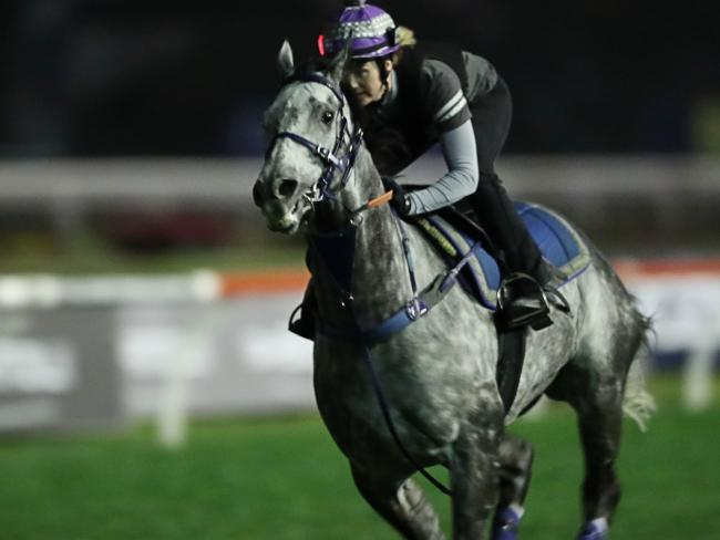Chautauqua's career hangs in the balance after the champion sprinter again refused to come out of the gates at a Rosehill barrier trail. Picture: Getty Images