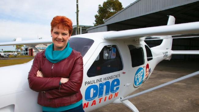 Pauline Hanson with the plane One Nation plane with party logo and a caricature of Senator Hanson, flown by James Ashby. Picture: Supplied One Nation