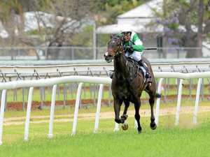 In search of Randwick's Bright Lights