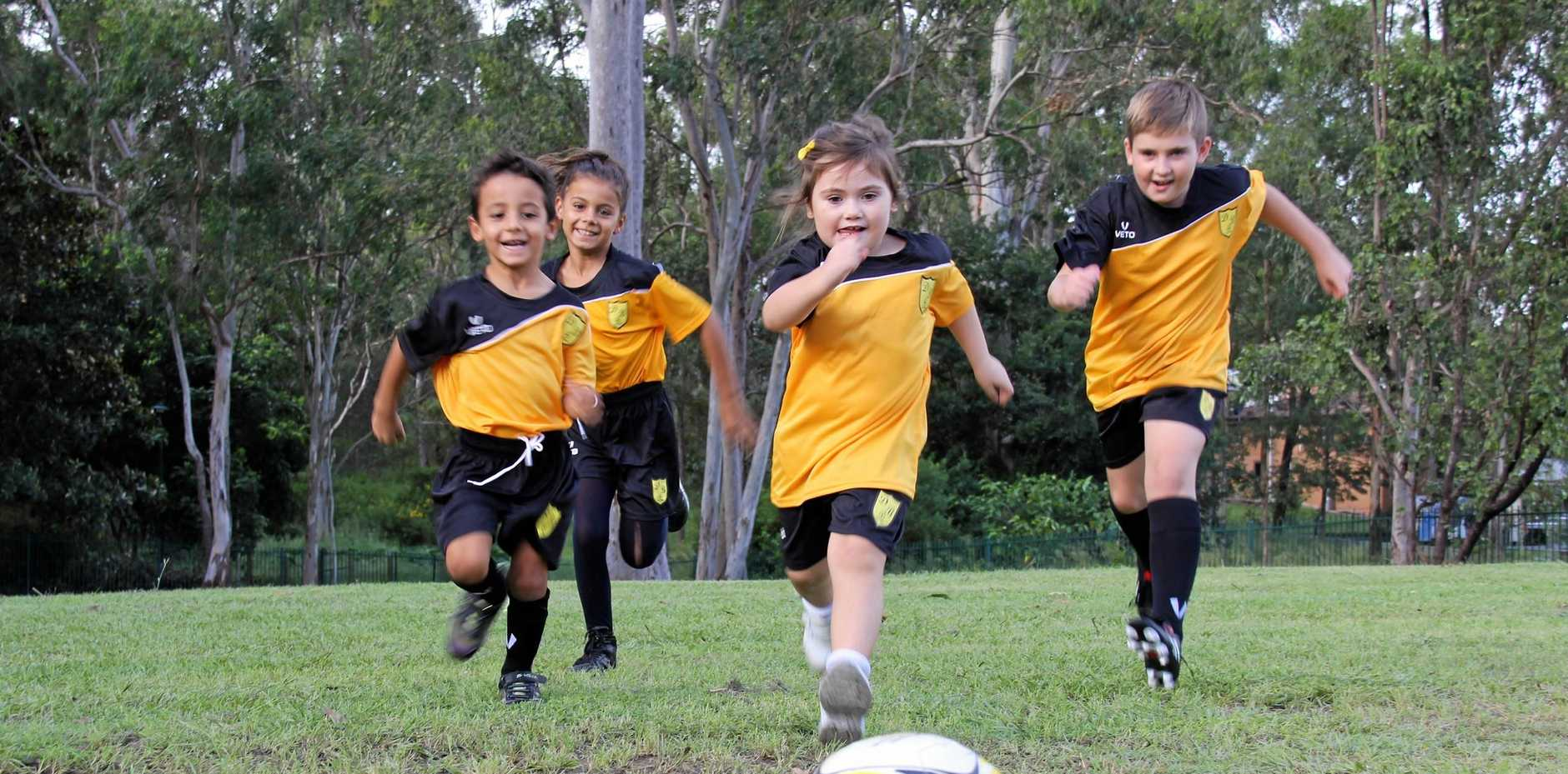 GOALS: After 15 years off the field, the Dinmore Bushrats have formed an under 11 and under six side for 2018.