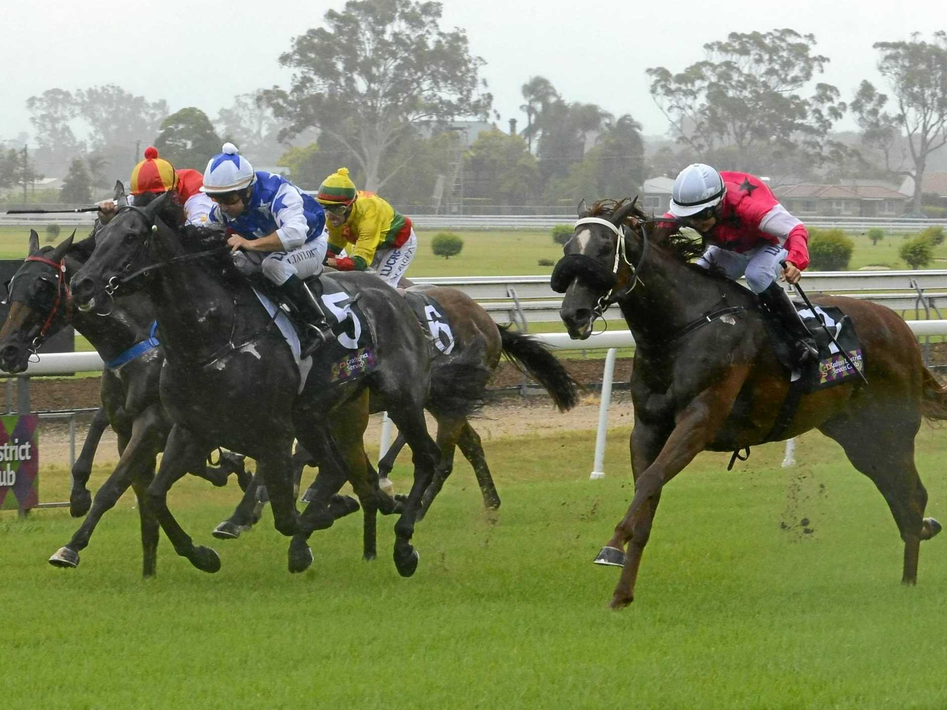 Wayne Lawson-trained gelding Dominant Crown surges down the outside at the Clarence River Jockey Club's Australia Day race day earlier this year.