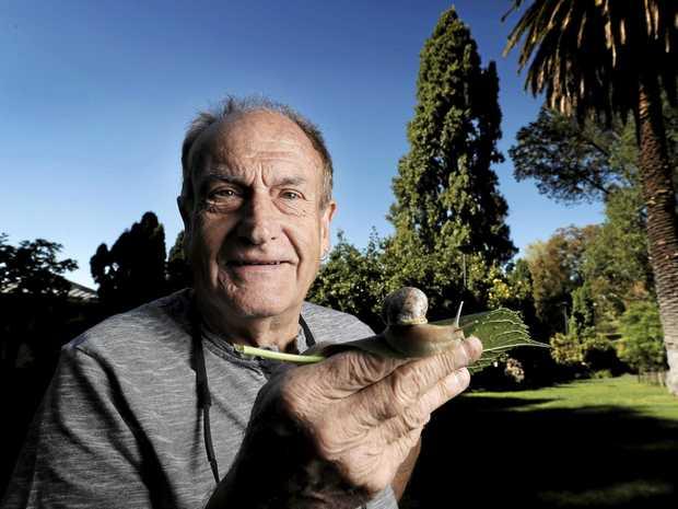 SNAIL BREEDING: Alistair Primrose of La Perouse Escargot grows small organic snails for restaurants.
