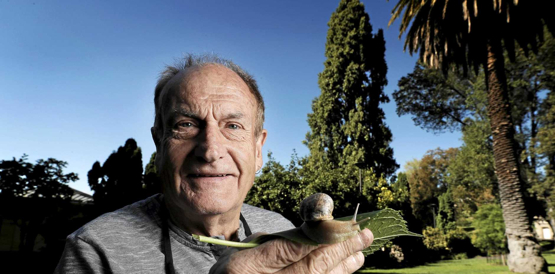 SNAIL BREEDING: Alistair Primrose of La Perouse Escargot grows small organic snails for restaurants.