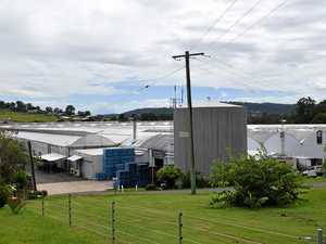 Coast farmer pitches new greenhouses in $12m expansion