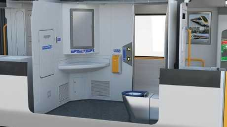 There isn't enough room in the supposedly disabled compliant bathrooms for some users to move from a wheelchair to the toilet seat. Picture: Supplied.