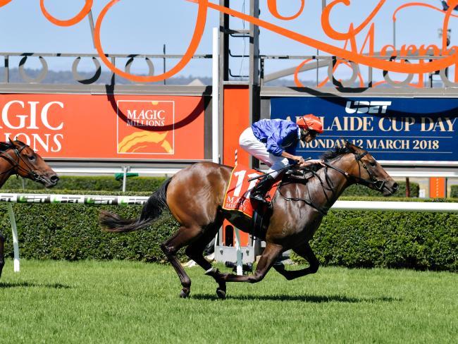 Jockey Billy Egan combines Zizzis to win the Magic Millions Adelaide 2YO Classic.