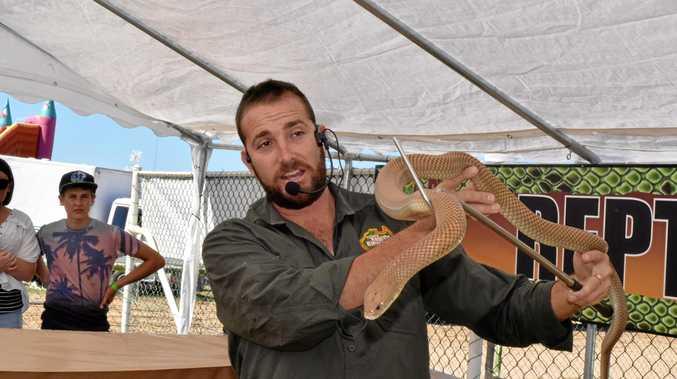 Reptile handler Luke Cheyne is ready for the Inglewood Show.