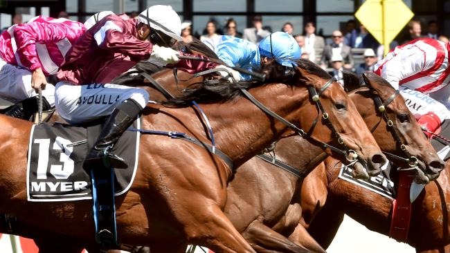 Eckstein could be the knockout runner in the Coolmore Classic on Saturday. Picture: Jay Town