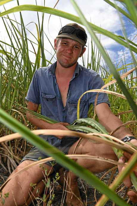 Bundaberg cane farmer Nick Glass