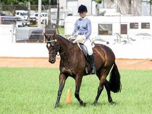 Locals on top at Lockyer Equestrian Group show