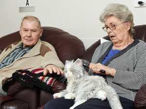 Robo pets provide residents company