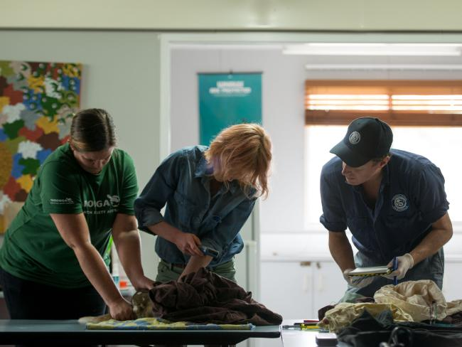 Taronga conservation society vet, Dr Natasha Robinson, Australian National University and Rob Brewster, Director of Rewilding Australia taking final data (such as weight) before the eastern quolls are released into the wild. Picture: WWF