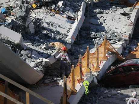 A rescue dog and its handler works at the scene where a pedestrian bridge collapsed a few days after it was built. Picture: Getty