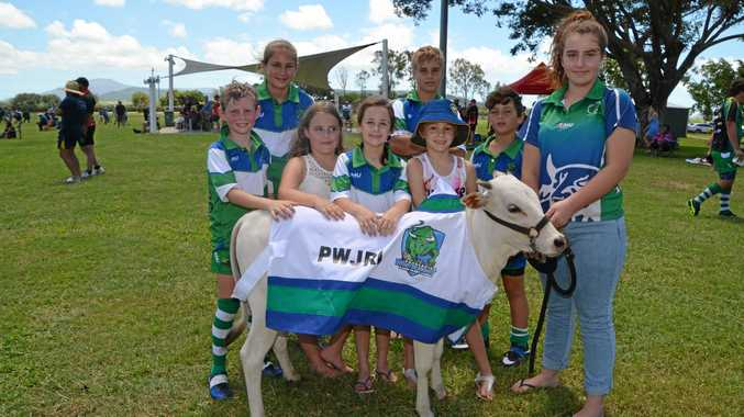 LEGACY CONTINUED:the bull with Junior Brahmans players and supporters at Proserpine junior sporting complex on Saturday Morning.