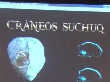 Part of a presentation made to Russian media, purporting to show an alien skull.