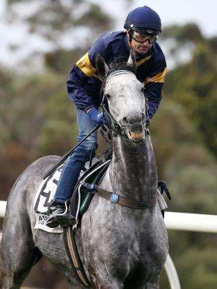 Chautauqua and Dwayne Dunn after he refused to jump. Picture: Michael Klein