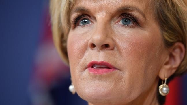 Julie Bishop said Australia would not be making any special visa considerations for white South African farmers.