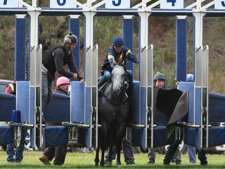 Fellas, I'm going to need a hand: Dwayne Dunn tries to persuade Chautauqua to leave the gates. Picture: Getty Images
