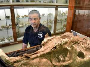 Push for megafauna museum to put region on the map
