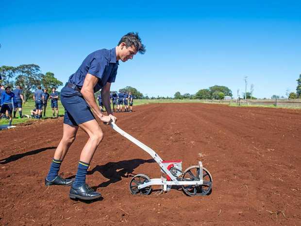 FARMING FUTURE: Toowoomba Grammar School student David Armstrong.