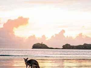 Tourism shines on Sunrise