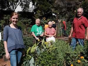 Green thumbs unite at garden open day