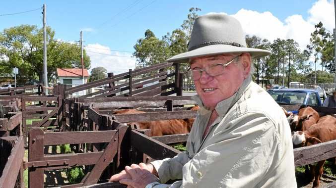 Downs farmer sick of imports' impact on Aussie pork markets