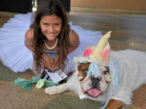 Pups play dress-ups at Pawsome Paws Parade