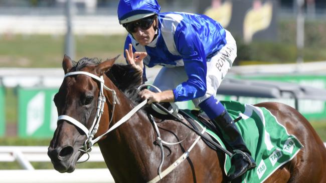 Winx would be worth about $10m as a broodmare, but she will never be sold, according to co-owner Peter Tighe. Picture: Simon Bullard