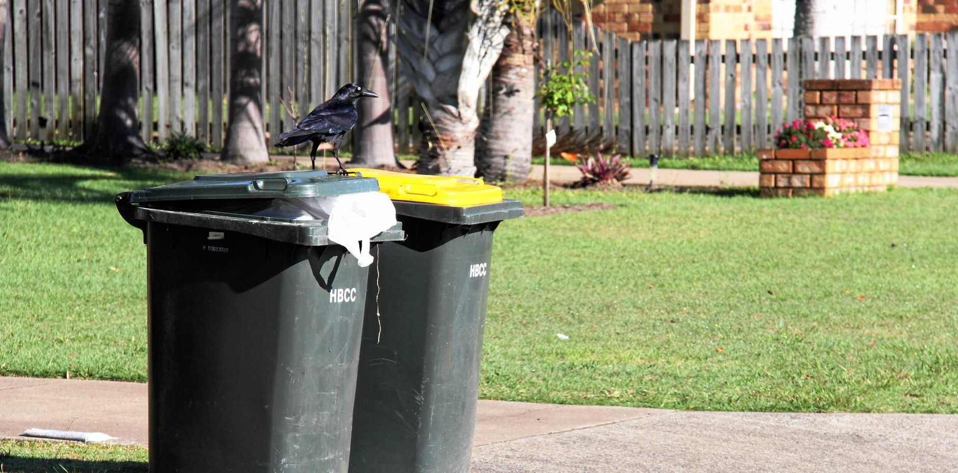 FINES in excess of $2500 for wheelie bins left out too long has left locals in a stink.