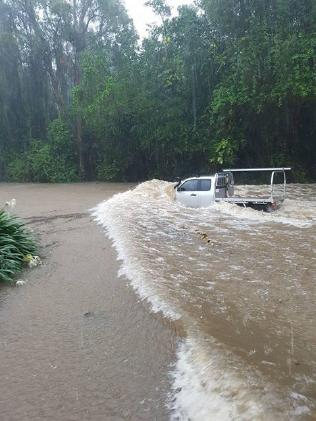 Ute braving floodwaters along Cedar Rd, Palm Cove. Photo: Angela Willemsen