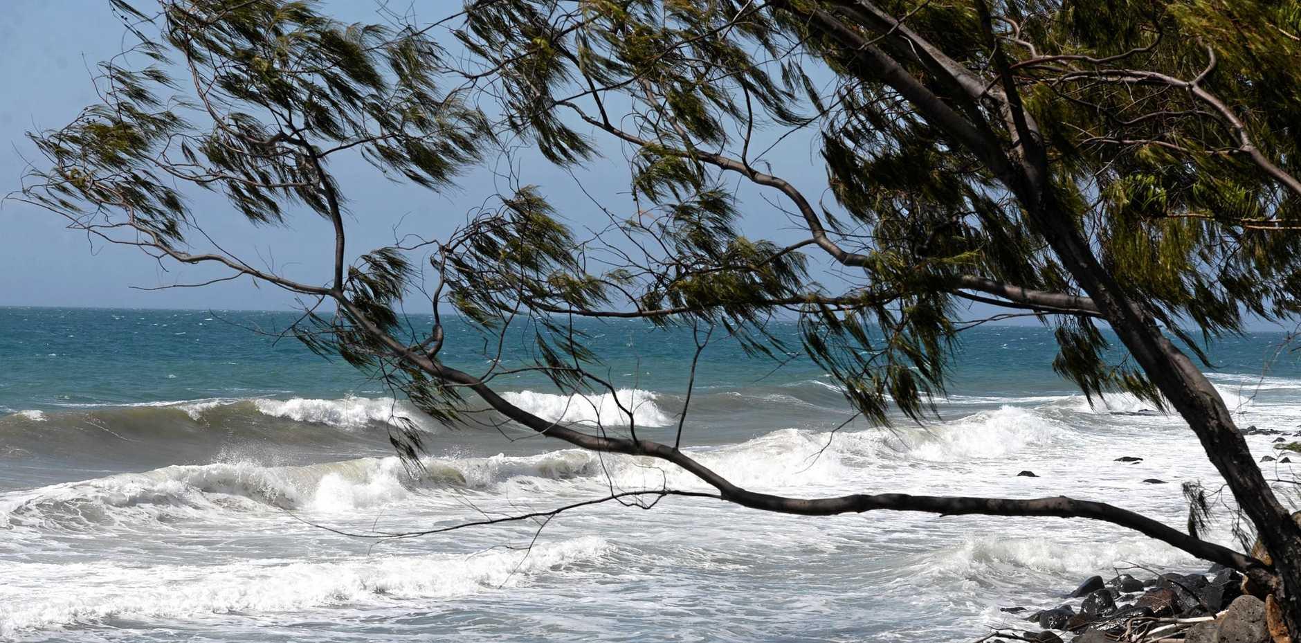 BLUSTERY WEATHER: Windy weather along the Bargara coastline.