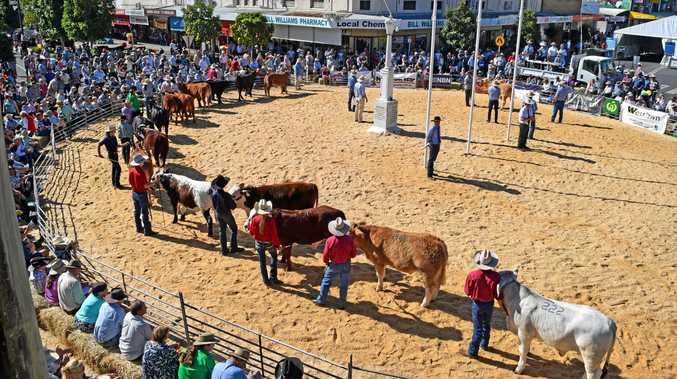Cattle Comp at 2017 Casino Beef Week.